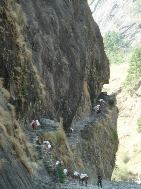 Le long de la Budhi Gandaki