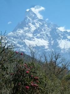 Macchapuchare depuis Low Camp sur le trek du Mardi Himal