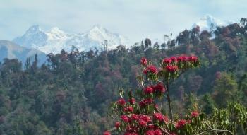 Ganesh Himal depuis le chemin entre Barpak et Laprak