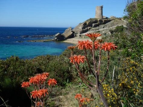 Parc Naturel de l'Estrecho - Tour de Gualdalmesí