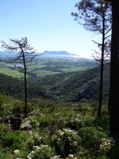 Rocher de Gibraltar et la baie d'Algeciras