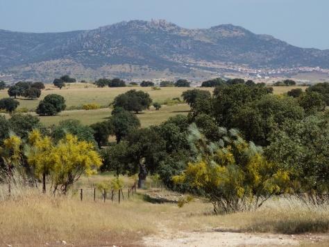 En direction de Santa Eufemia