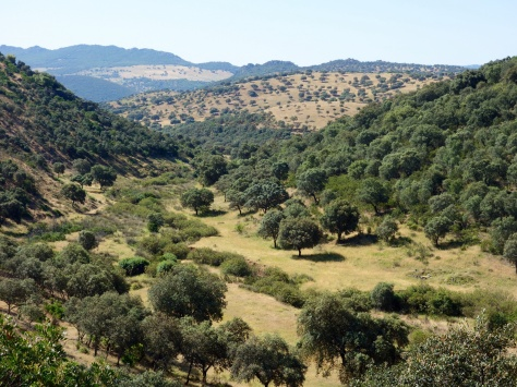 Sierra de Siruela