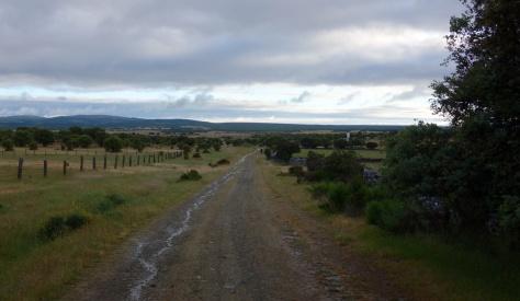 Via de la Plata après Fuenterroble de Salvatierra