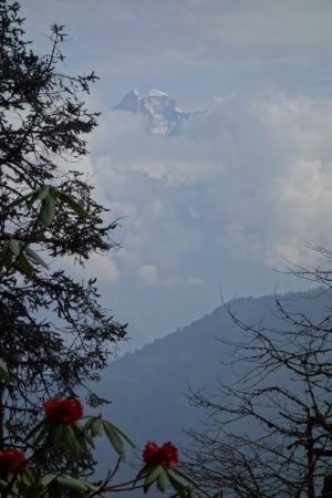 Le Gaurishankar dans la montée à Chordung Peak
