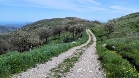 Entre le mont Leardo et le mont Rossella
