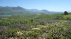 Entre Alcamo et San Giuseppe Jato. Au fond le mont Jato et le mont Kumeta