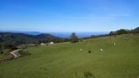 Entre les parcs d'Aspromonte et delle Serre, la côte Tyrrheniénne