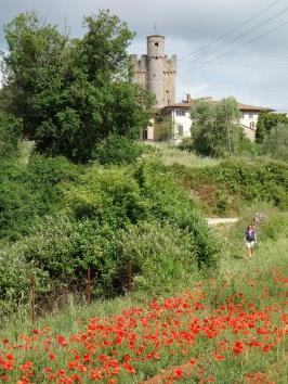 Sur la Via Francigena entre Sienne et Montereggioni